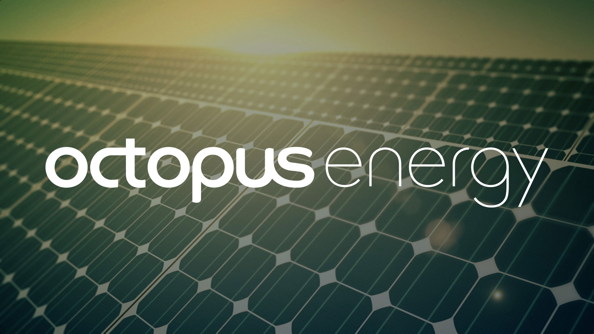 Octopus energy reviews: is it actually a good energy supplier?